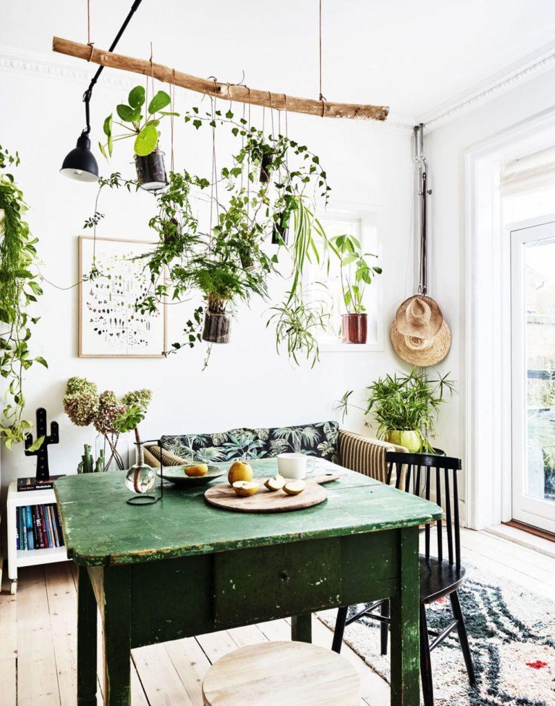plantes vertes esprit boheme